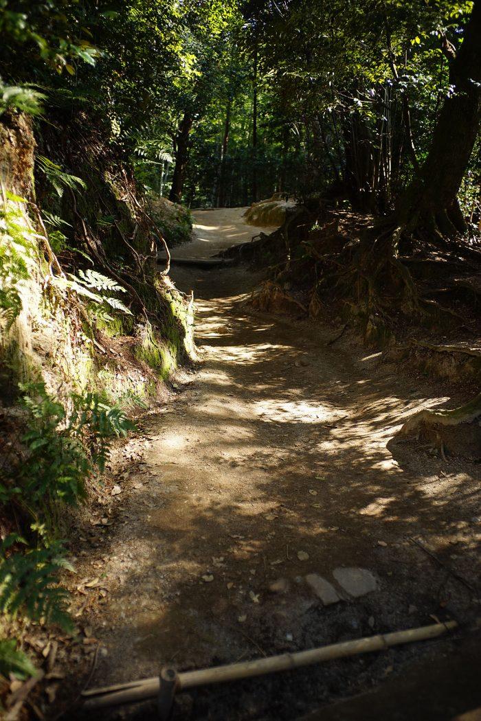 伏見神寶神社への道