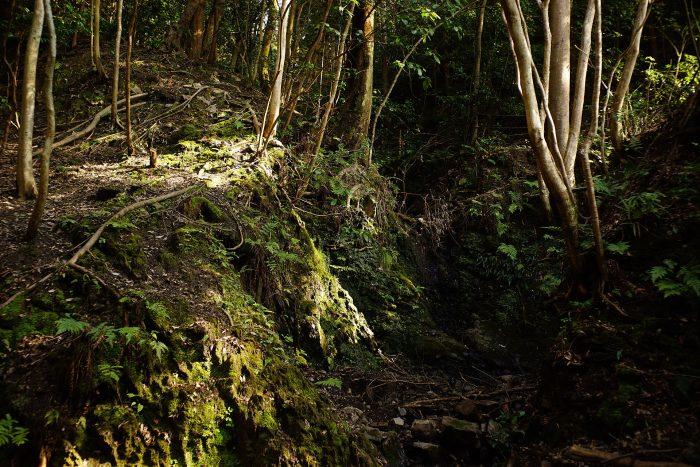 如意輪の滝②