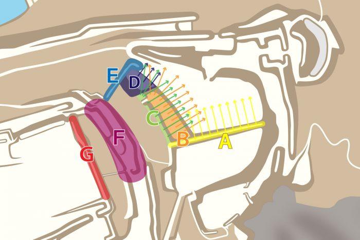 東三の丸の防御