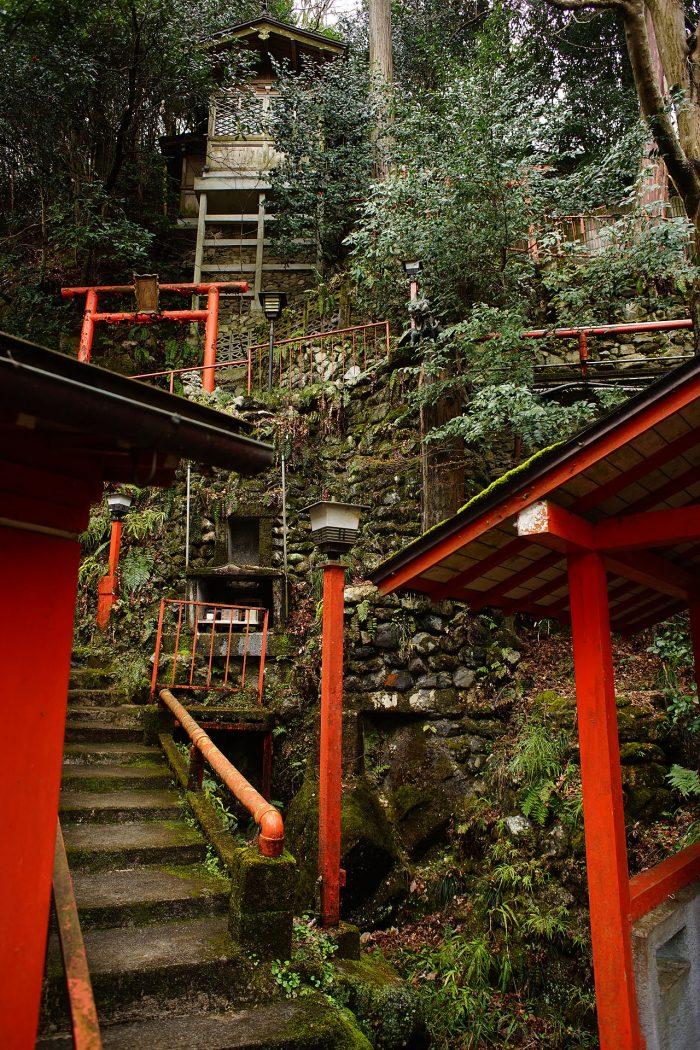 日天寺/本堂脇の斜面