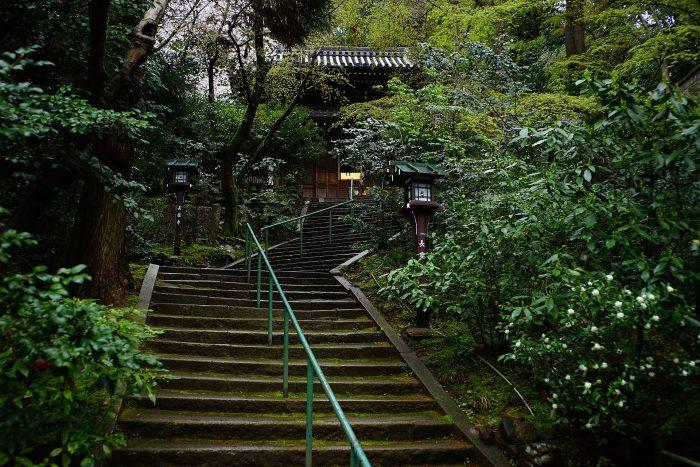 長楽寺/石段