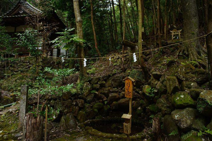 崇道神社⑥